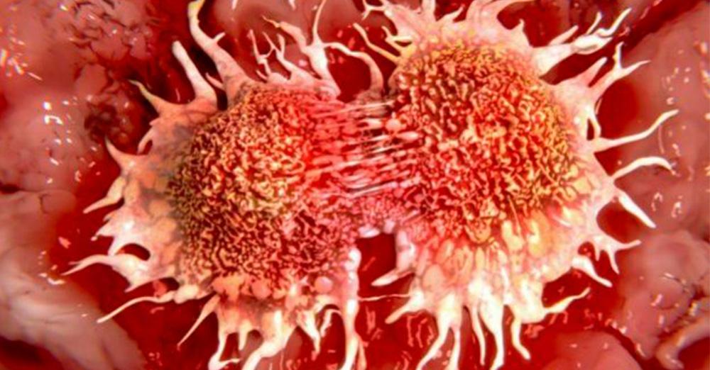 Новый способ борьбы с раком